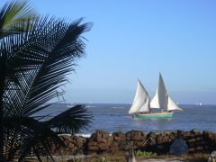 Sailboat seen from the Chez Maggie Hotel in Morondava / Madagascar