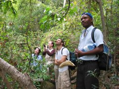 Trekking in Isalo Mountains in Madagascar / Spotting for lemurs, especially Kattas